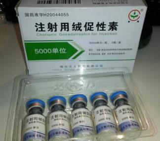 Human Chorionic Gonadotropin (Pregnyl, HCG, SP Gonadotropin)